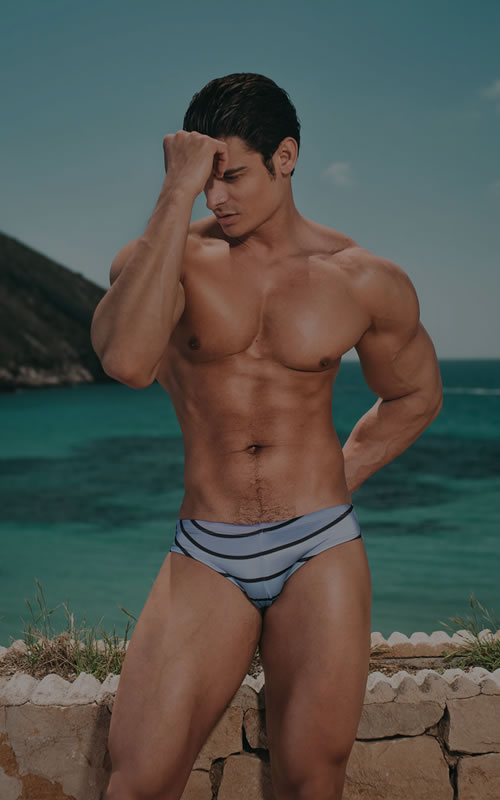 SUMMER BRIEF